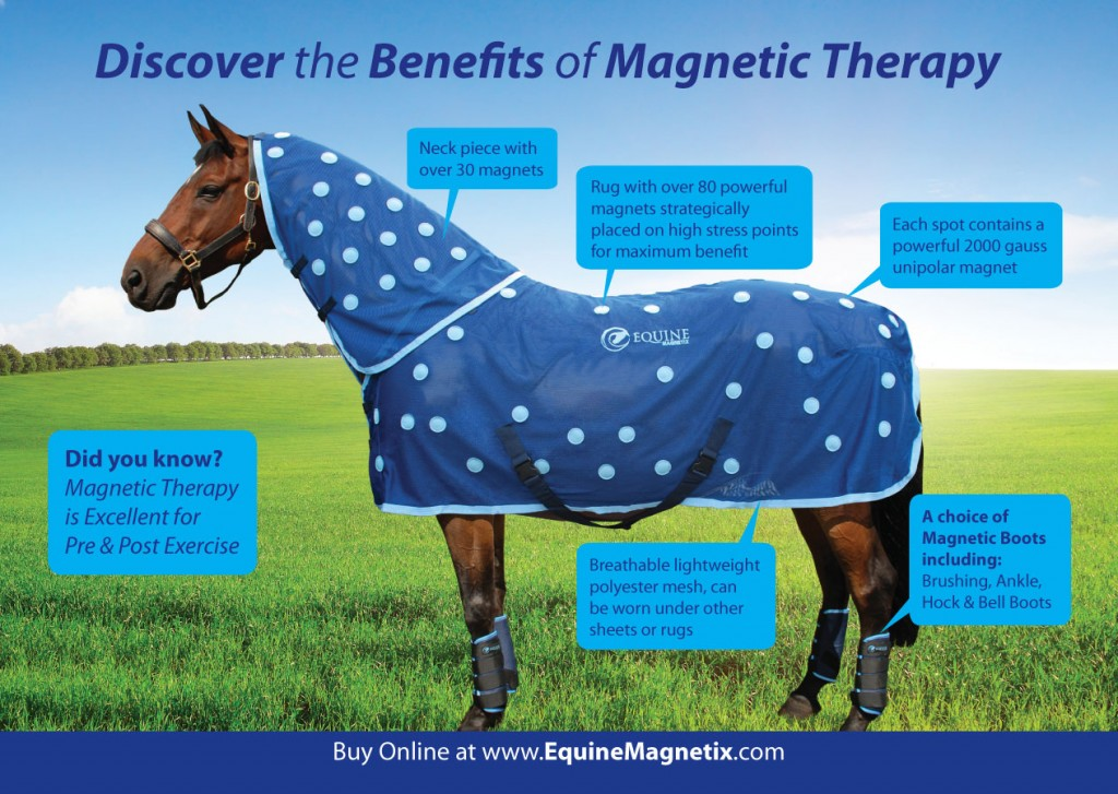 Discover the benefits of magnetic therapy. Front cover of the leaflet listing features: excellent for pre and post exercise, breathable lightweight mesh, over 80 unipolar magnets at 2000 gauss on the rug and a further 30 magnets on the neck piece