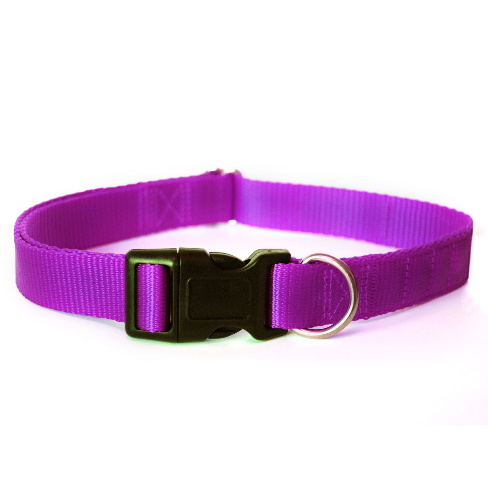 Purple magnetic dog collar by Canine Magnetix