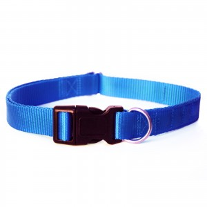 Blue magnetic dog collar