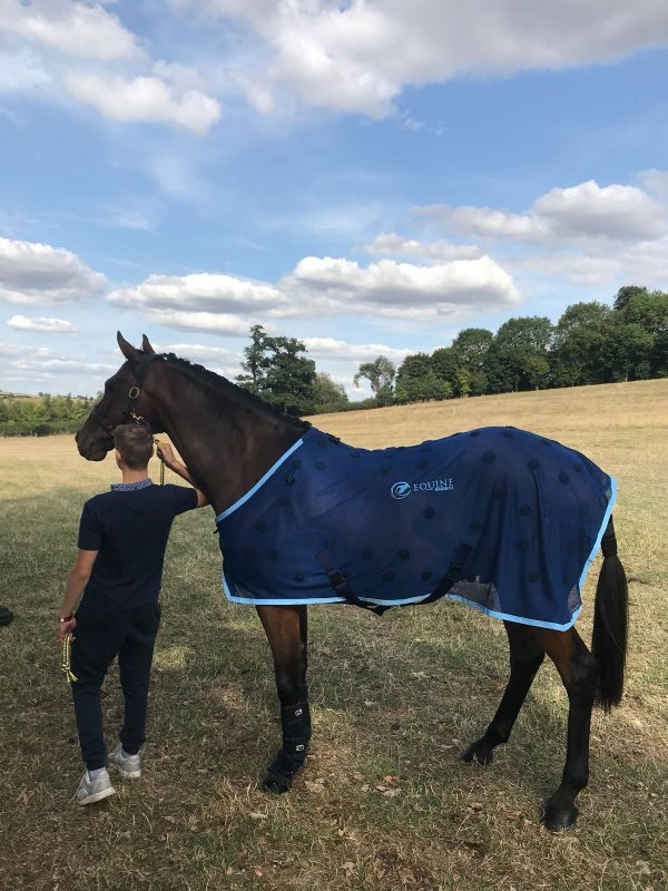 Annacotty modelling his magnetic rug, shown in a field